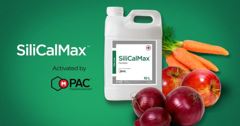 NutriAg helps improve crop quality with newly registered SiliCalMax™.